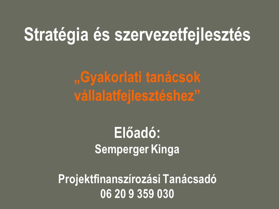 """Stratégia és szervezetfejlesztés """"Gyakorlati tanácsok vállalatfejlesztéshez Előadó: Semperger Kinga Projektfinanszírozási Tanácsadó 06 20 9 359 030"""