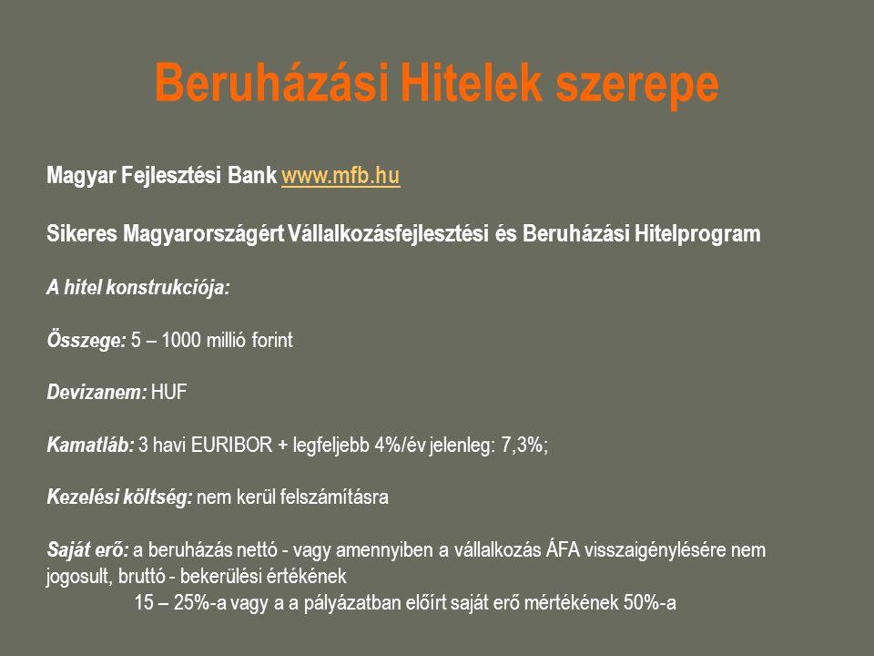 Beruházási Hitelek szerepe
