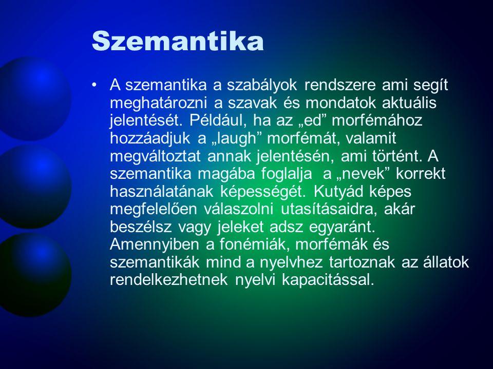 Szemantika