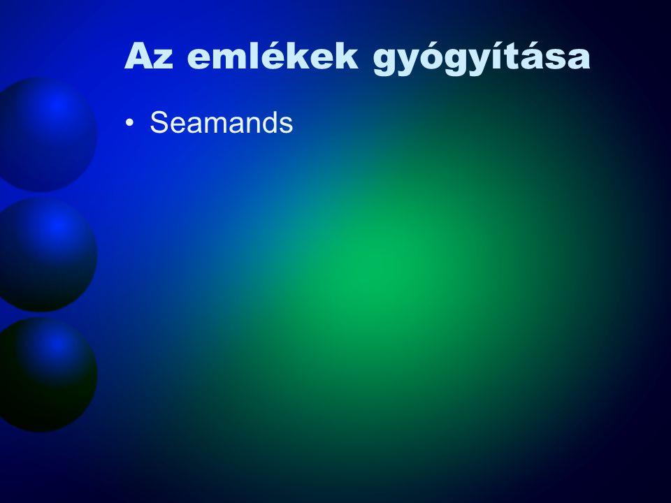 Az emlékek gyógyítása Seamands