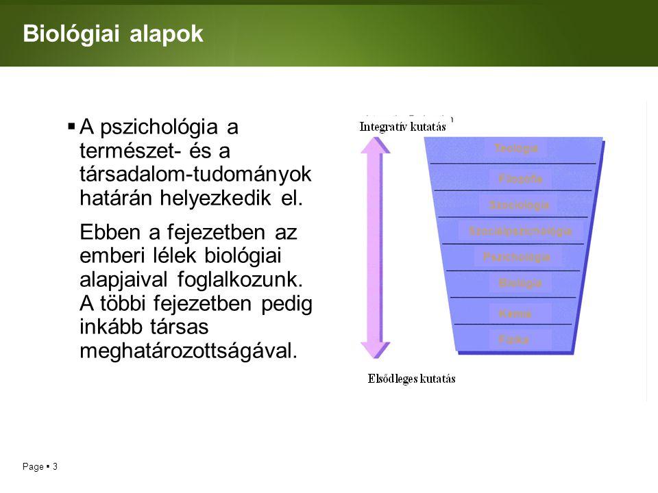 Biológiai alapok A pszichológia a természet- és a társadalom-tudományok határán helyezkedik el.