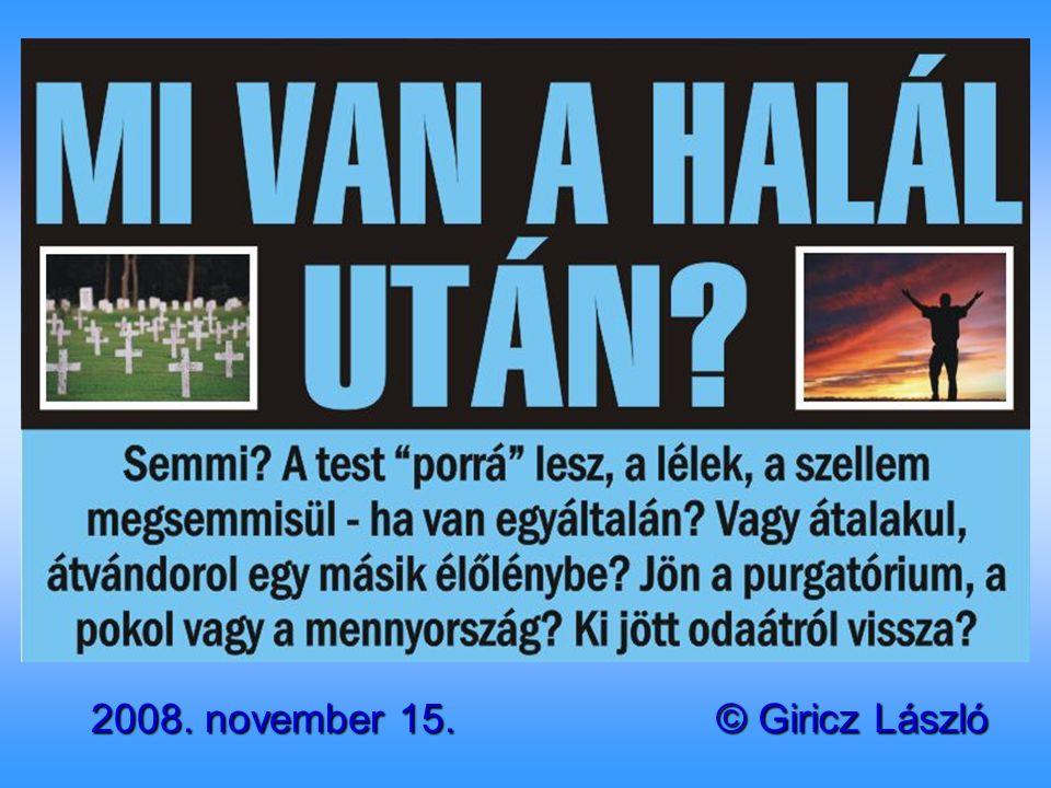 2008. november 15. © Giricz László