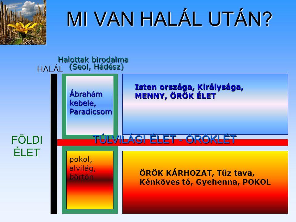 TÚLVILÁGI ÉLET - ÖRÖKLÉT