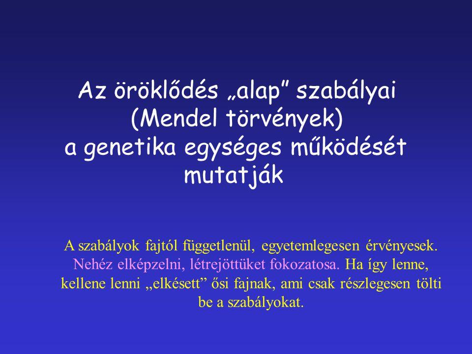 """Az öröklődés """"alap szabályai (Mendel törvények)"""