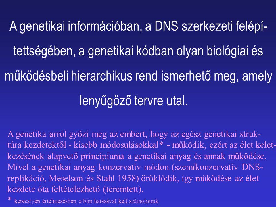 A genetikai információban, a DNS szerkezeti felépí-