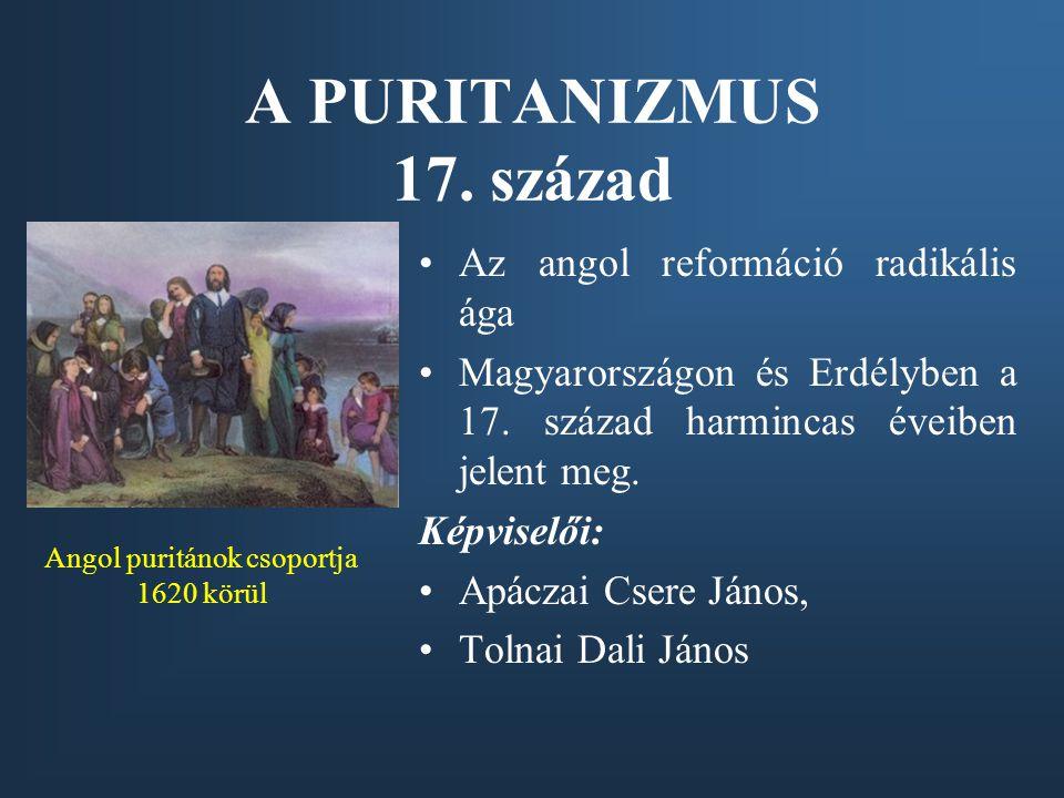 Angol puritánok csoportja