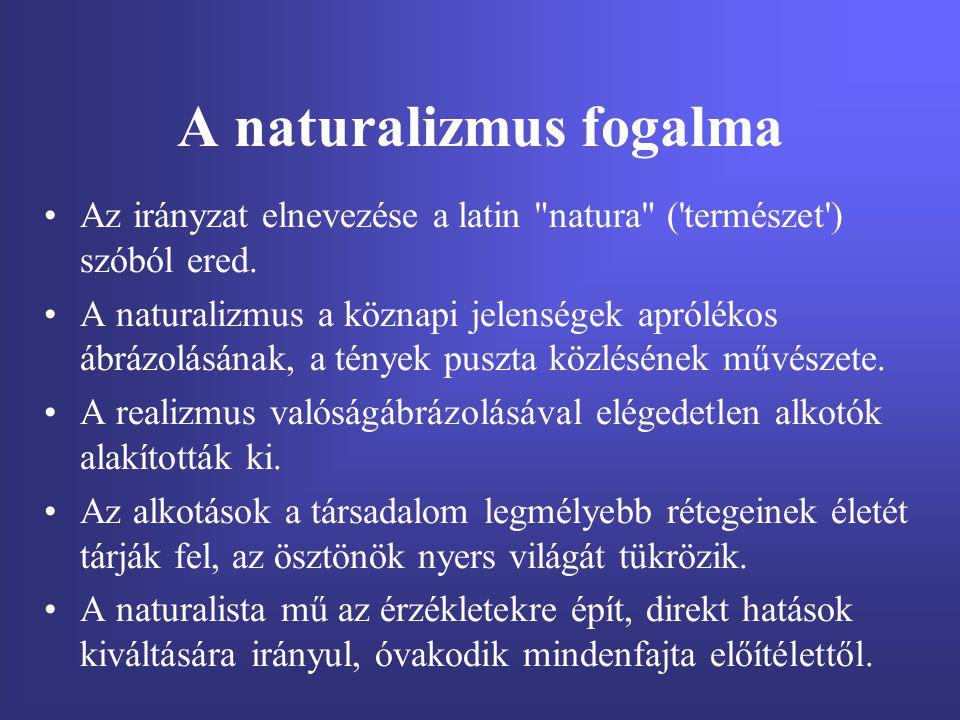 A naturalizmus fogalma
