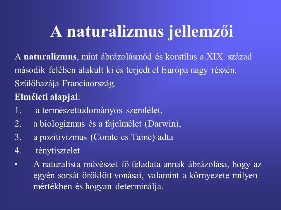A naturalizmus jellemzői