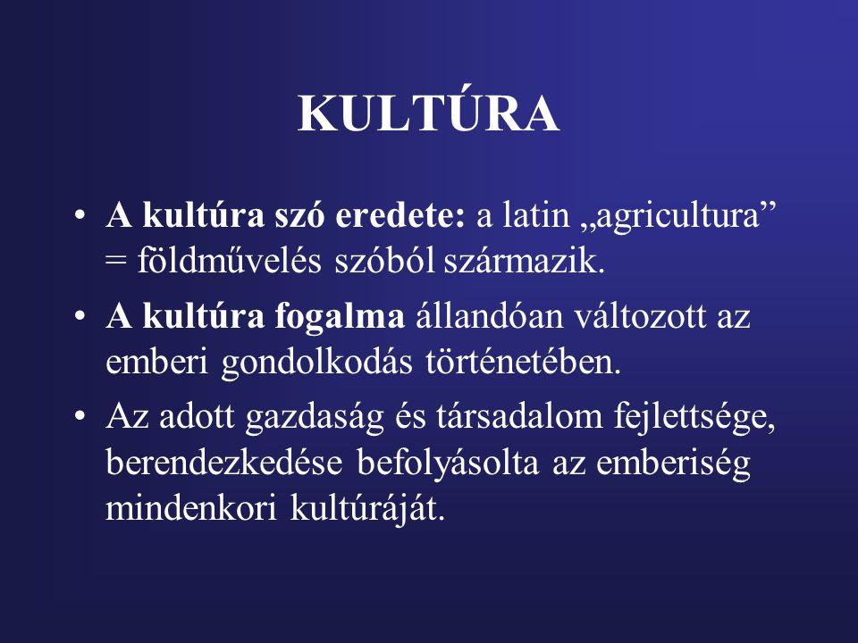 """KULTÚRA A kultúra szó eredete: a latin """"agricultura = földművelés szóból származik."""