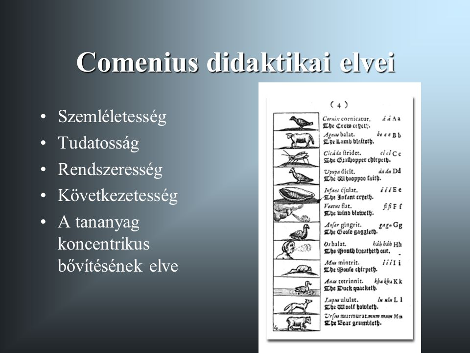 Comenius didaktikai elvei