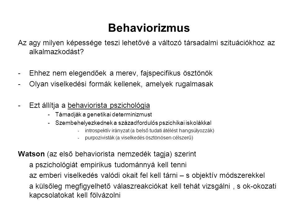 Behaviorizmus Az agy milyen képessége teszi lehetővé a változó társadalmi szituációkhoz az alkalmazkodást