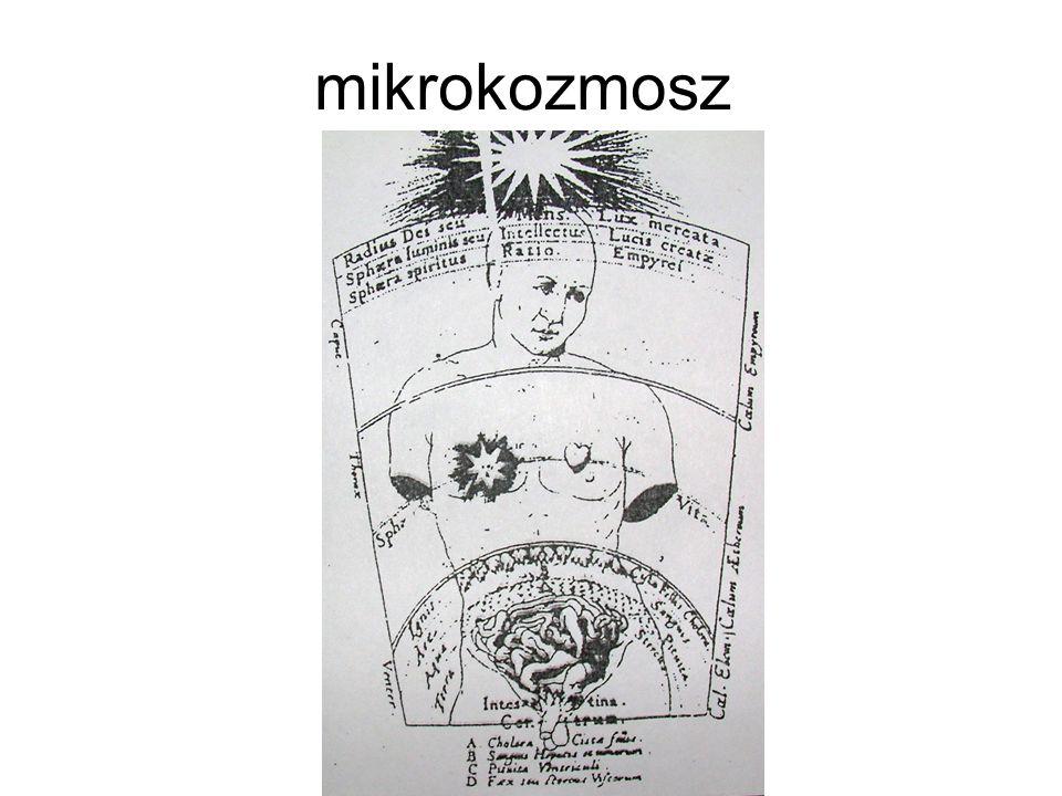 mikrokozmosz