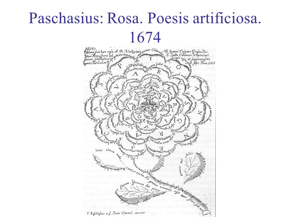 Paschasius: Rosa. Poesis artificiosa. 1674