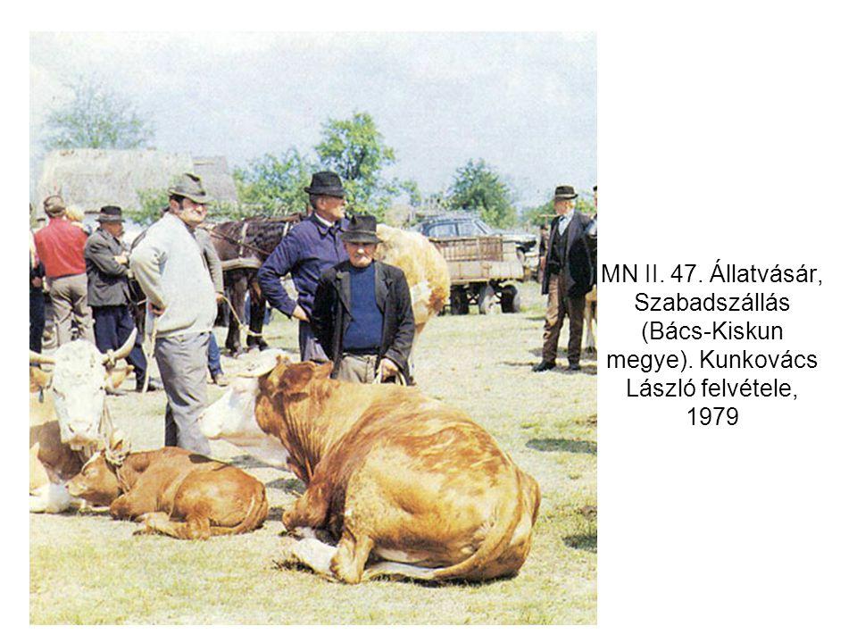 MN II. 47. Állatvásár, Szabadszállás (Bács-Kiskun megye)