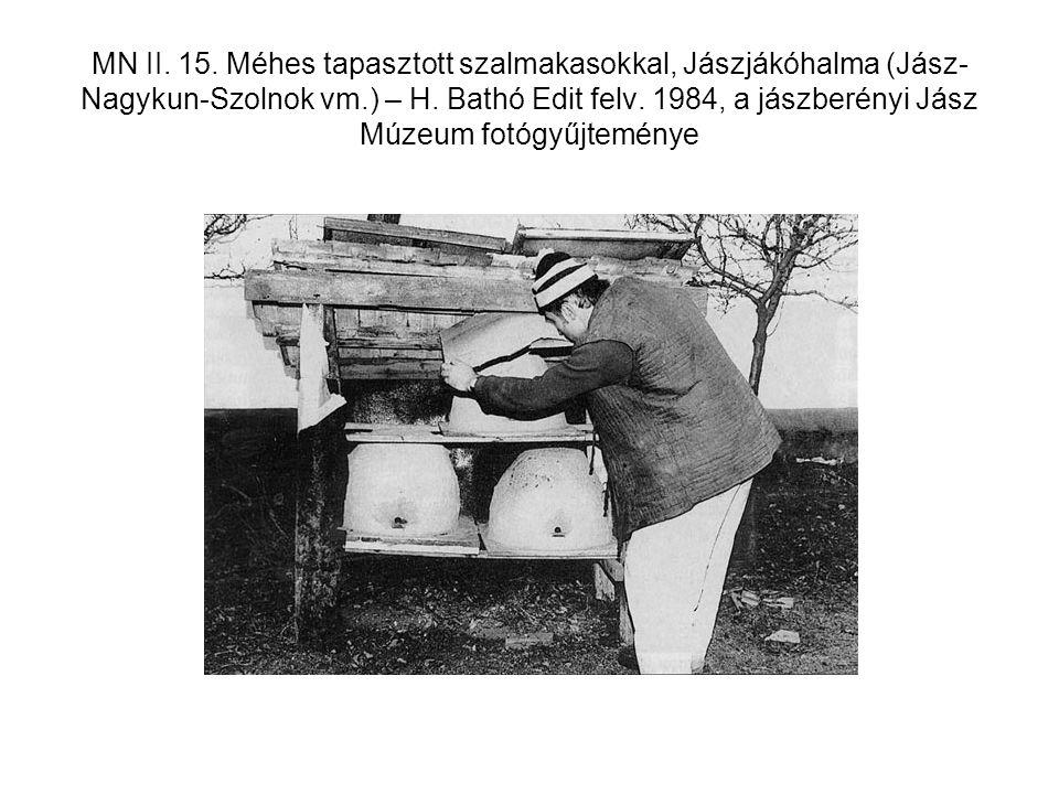 MN II. 15. Méhes tapasztott szalmakasokkal, Jászjákóhalma (Jász-Nagykun-Szolnok vm.) – H.