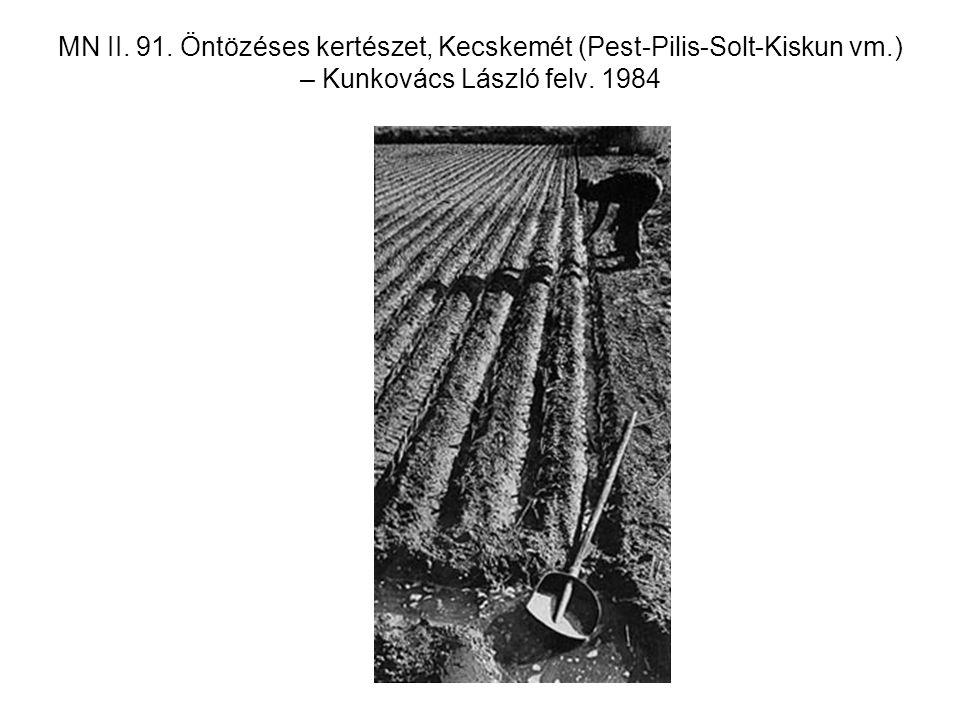 MN II. 91. Öntözéses kertészet, Kecskemét (Pest-Pilis-Solt-Kiskun vm