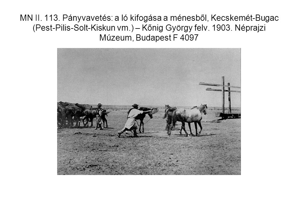 MN II. 113.