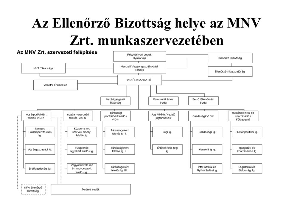 Az Ellenőrző Bizottság helye az MNV Zrt. munkaszervezetében