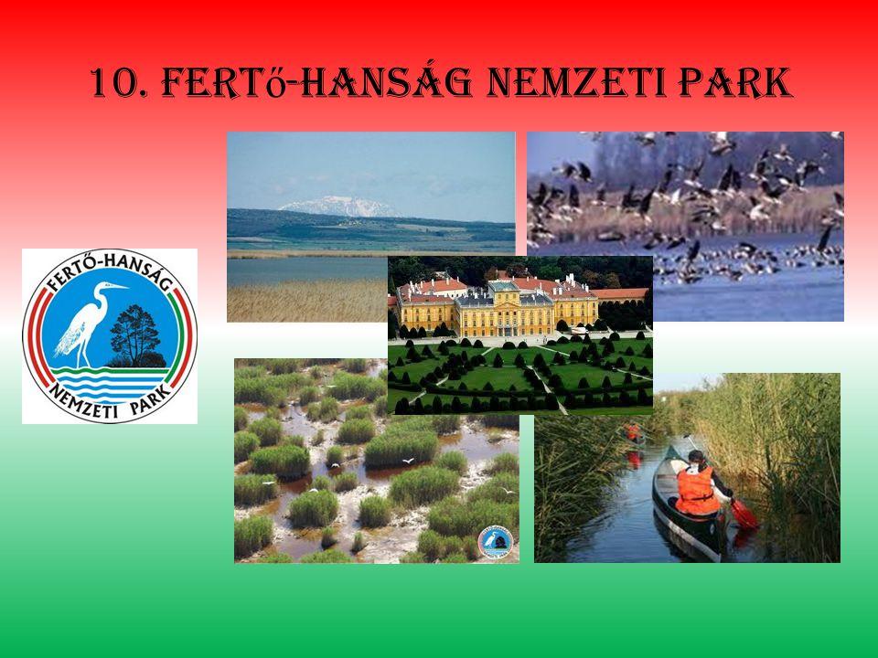 10. fertő-hanság nemzeti park