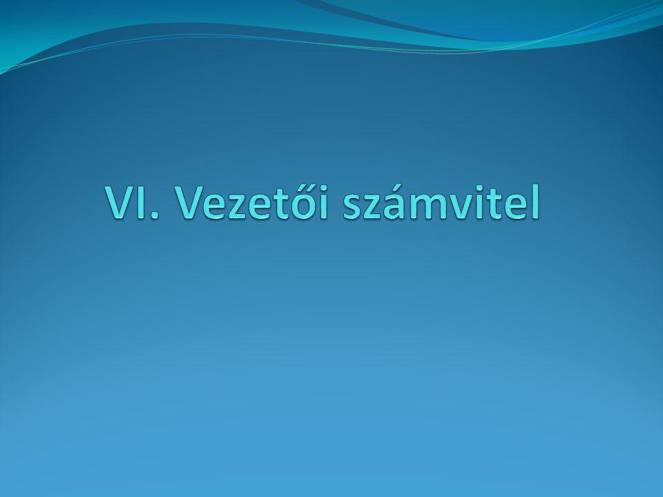 VI. Vezetői számvitel