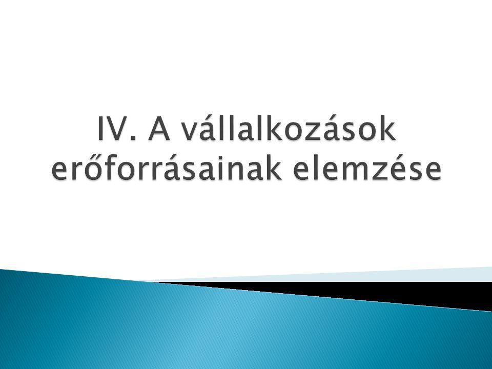 IV. A vállalkozások erőforrásainak elemzése