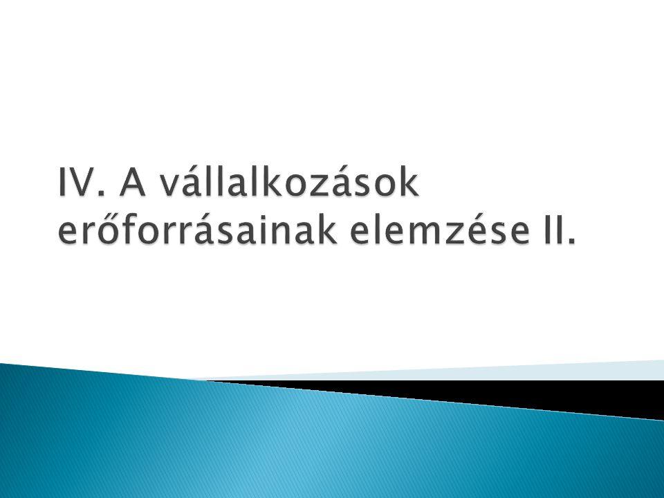 IV. A vállalkozások erőforrásainak elemzése II.