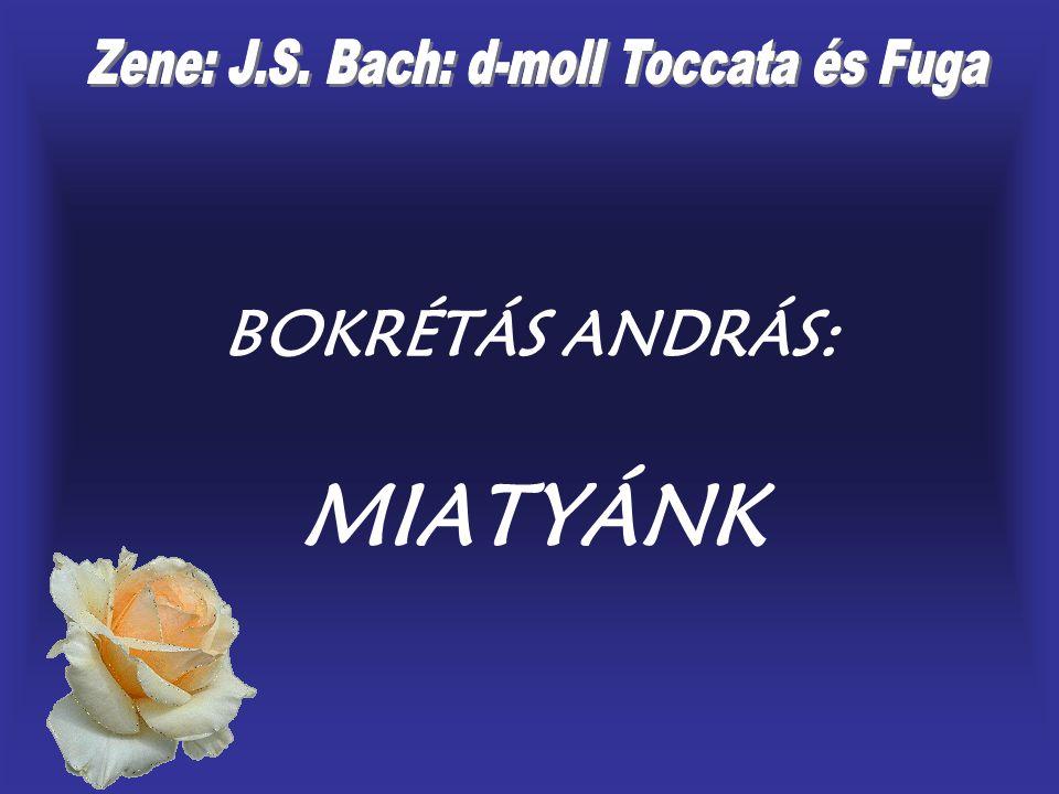 Zene: J.S. Bach: d-moll Toccata és Fuga