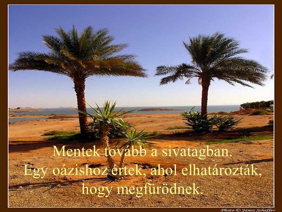 Mentek tovább a sivatagban