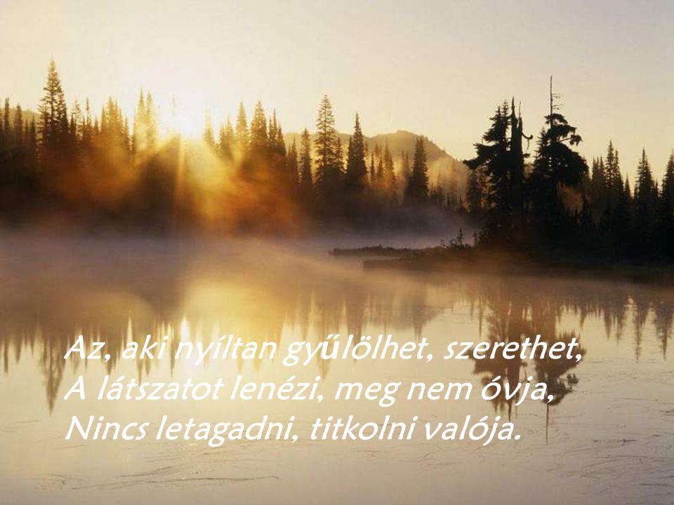 Az, aki nyíltan gyűlölhet, szerethet, A látszatot lenézi, meg nem óvja, Nincs letagadni, titkolni valója.
