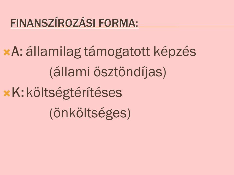 Finanszírozási forma: