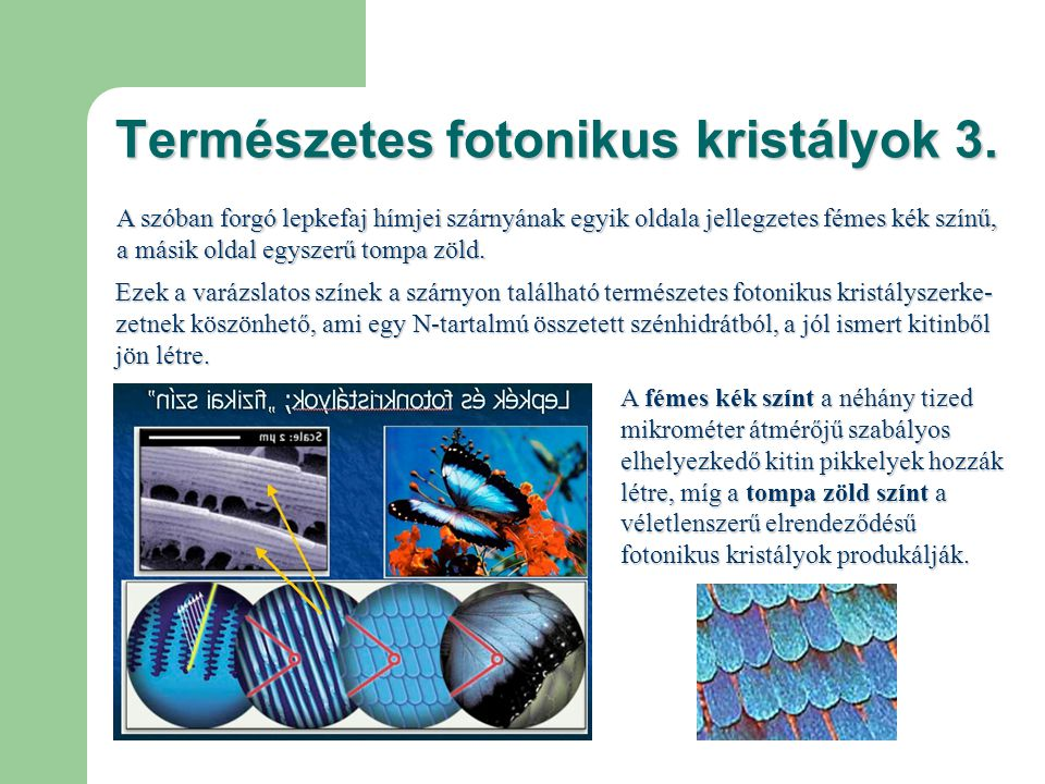 Természetes fotonikus kristályok 3.