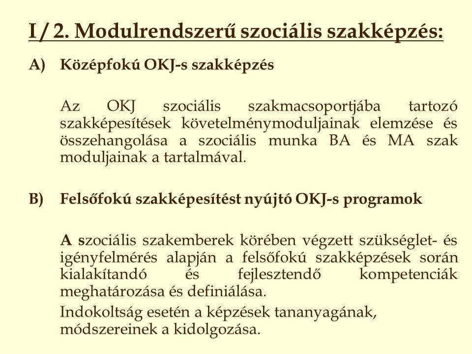 I / 2. Modulrendszerű szociális szakképzés: