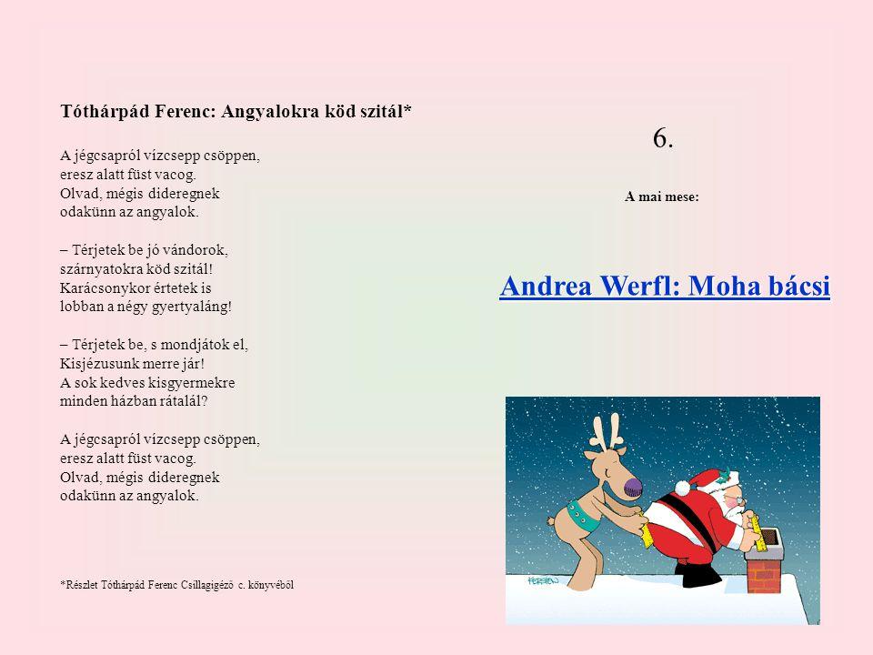 Andrea Werfl: Moha bácsi