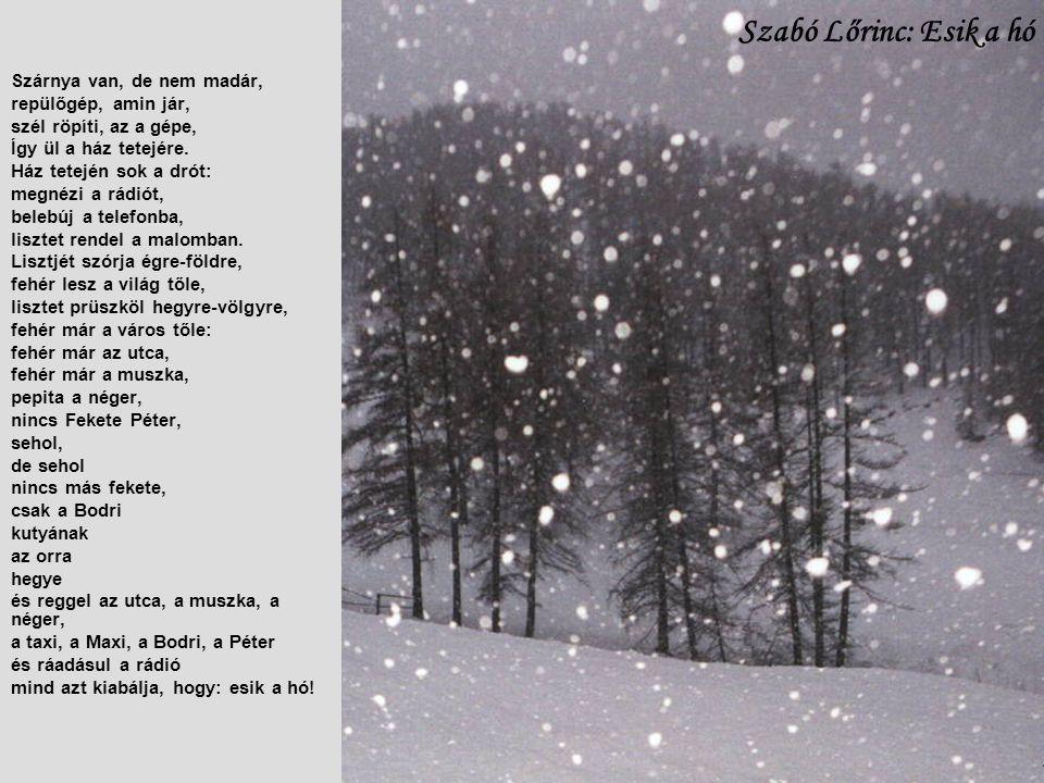 Szabó Lőrinc: Esik a hó Szárnya van, de nem madár,