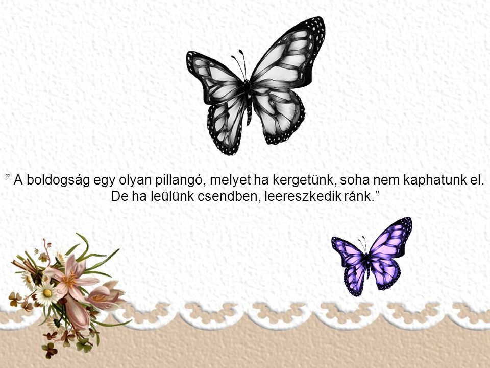 A boldogság egy olyan pillangó, melyet ha kergetünk, soha nem kaphatunk el.