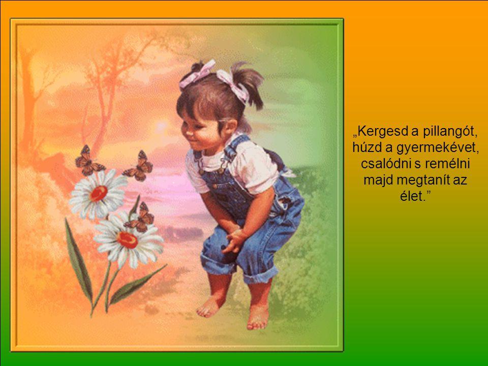"""""""Kergesd a pillangót, húzd a gyermekévet, csalódni s remélni majd megtanít az élet."""
