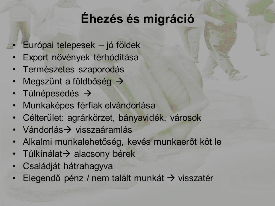 Éhezés és migráció Európai telepesek – jó földek