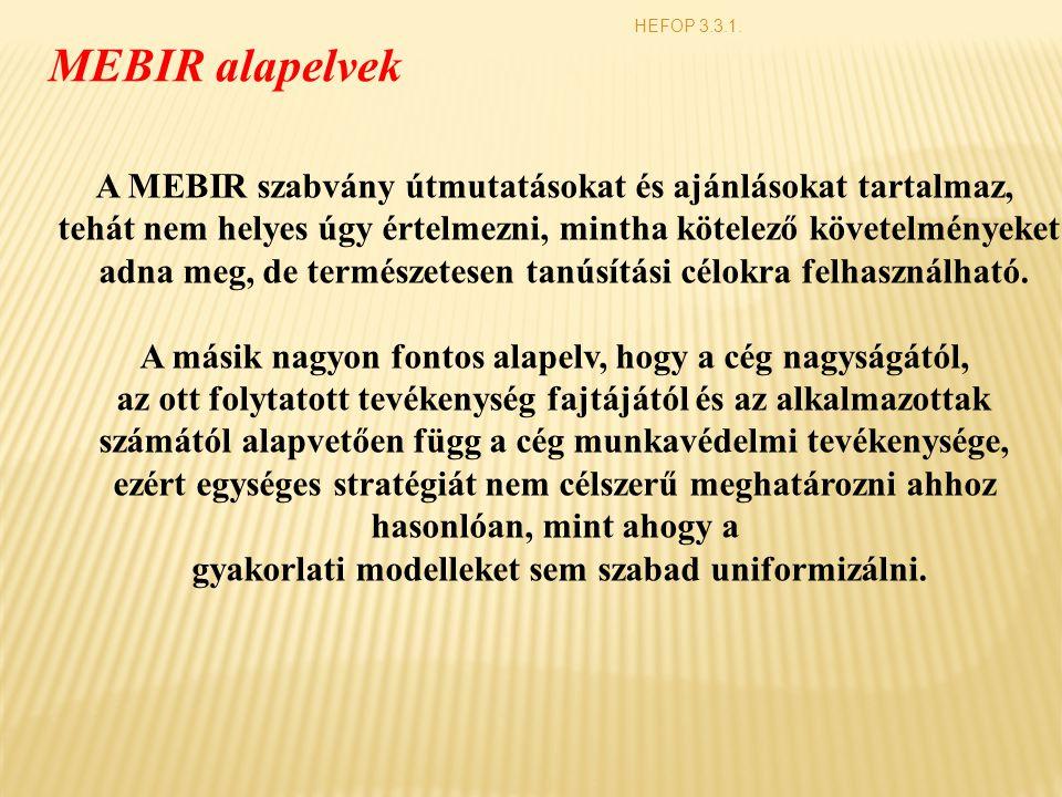HEFOP 3.3.1. MEBIR alapelvek. A MEBIR szabvány útmutatásokat és ajánlásokat tartalmaz,