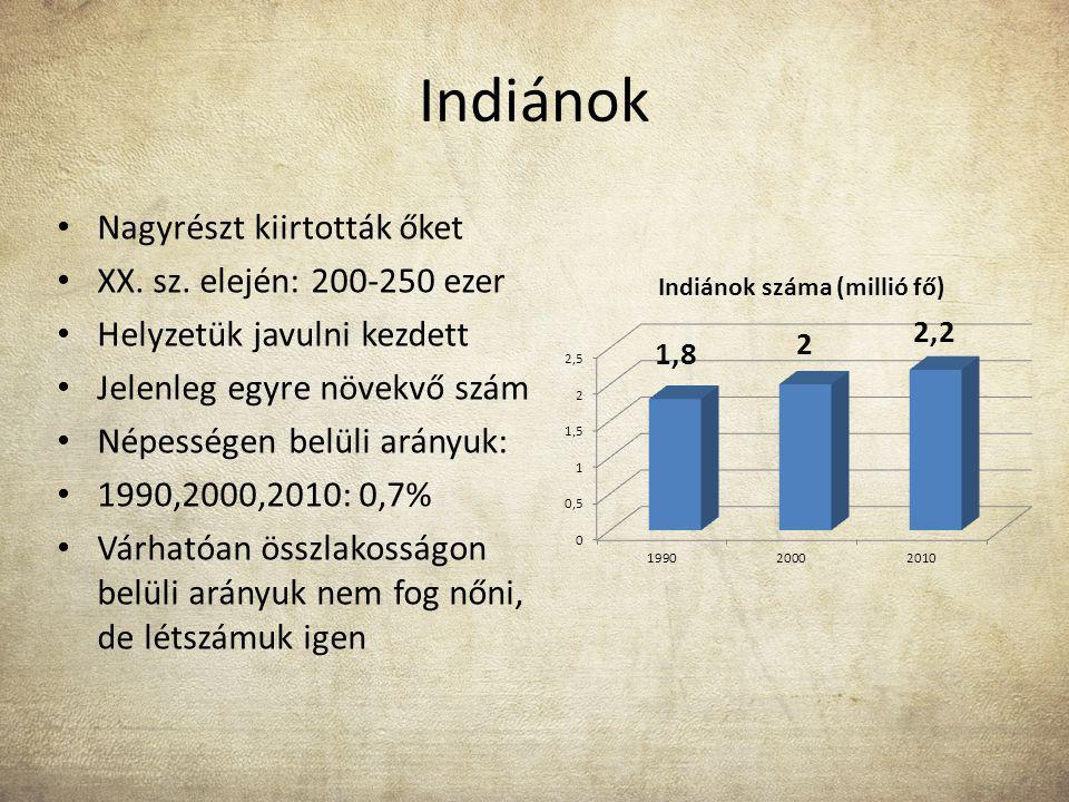 Indiánok Nagyrészt kiirtották őket XX. sz. elején: 200-250 ezer