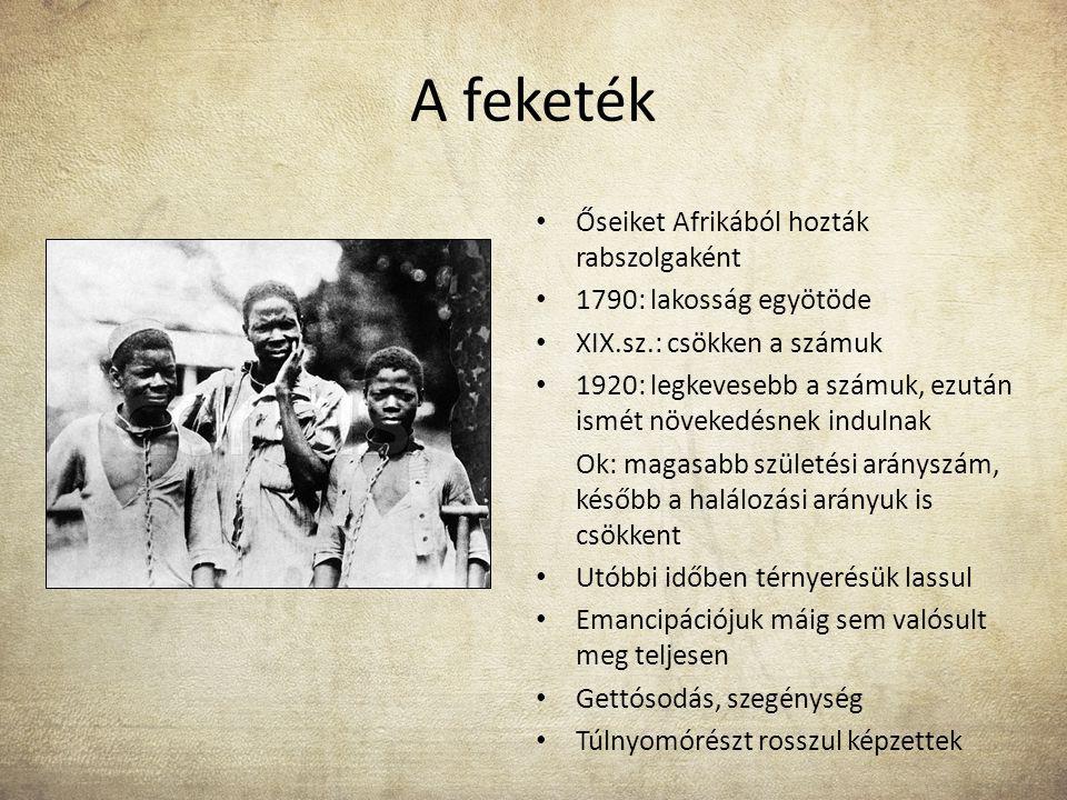 A feketék Őseiket Afrikából hozták rabszolgaként