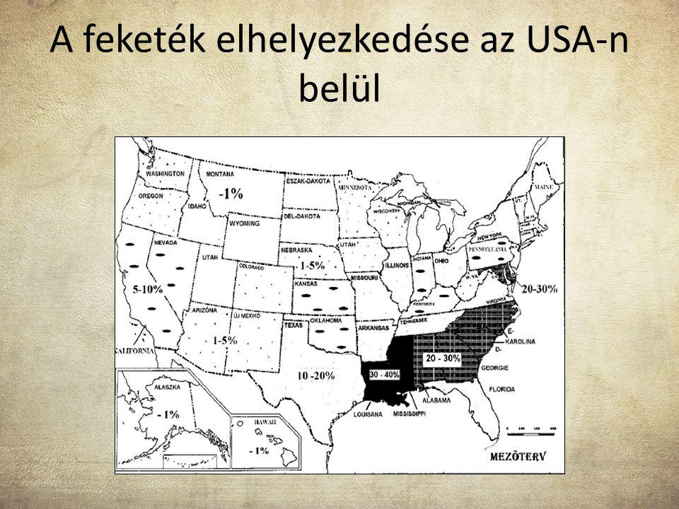 A feketék elhelyezkedése az USA-n belül