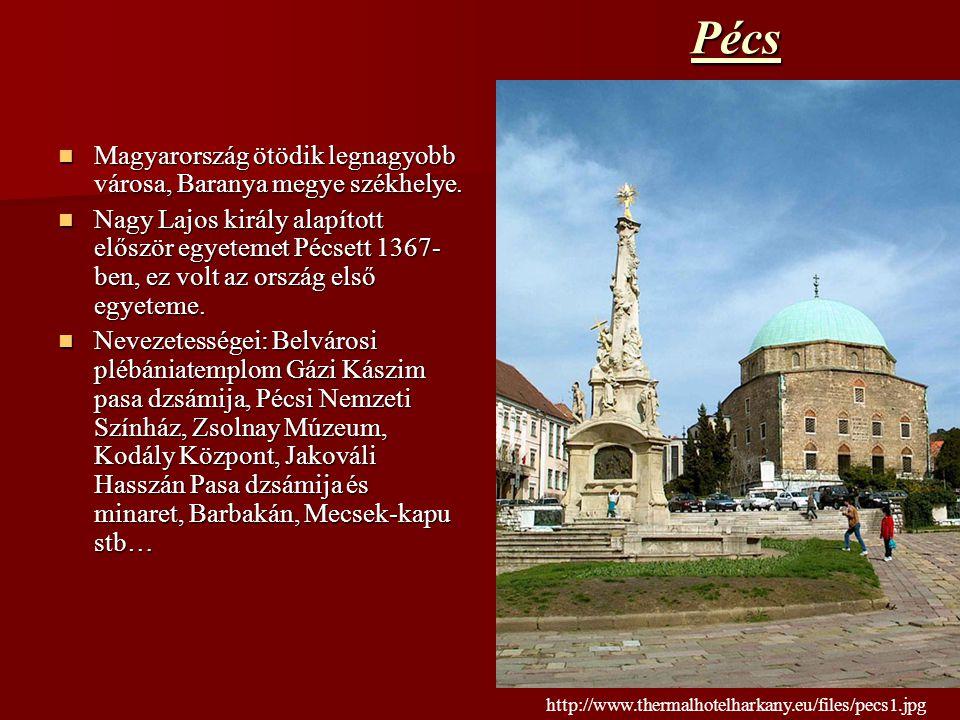 Pécs Magyarország ötödik legnagyobb városa, Baranya megye székhelye.