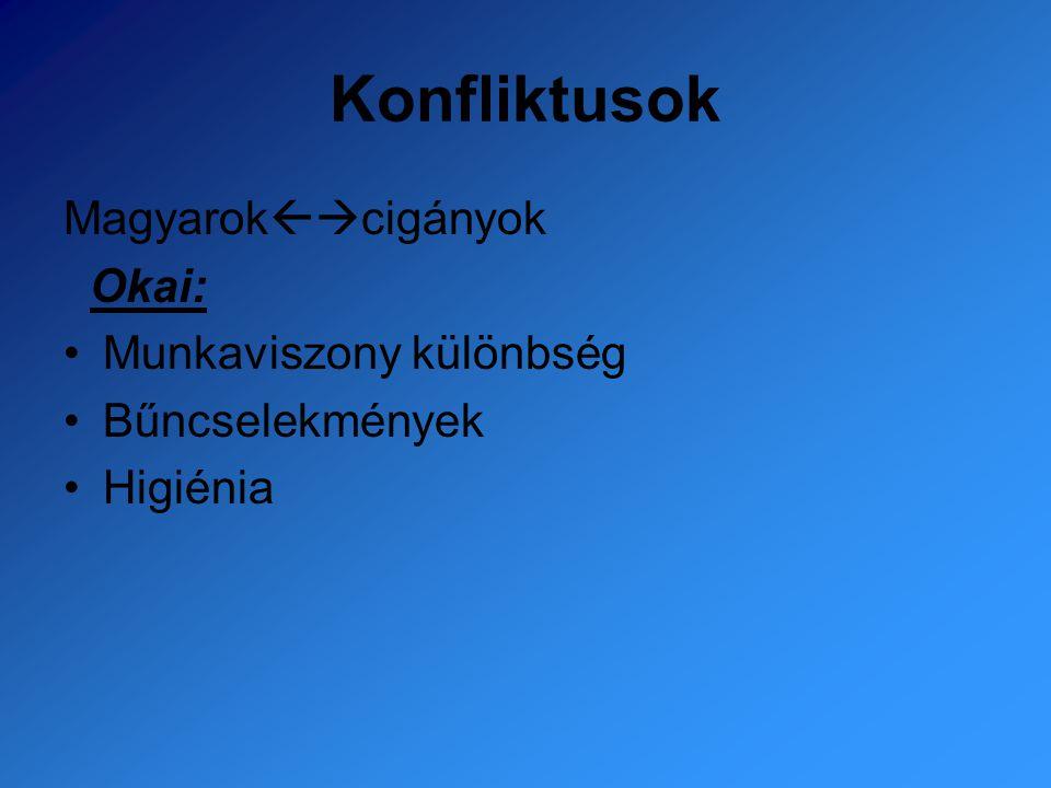 Konfliktusok Magyarokcigányok Okai: Munkaviszony különbség