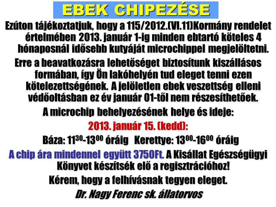 EBEK CHIPEZÉSE