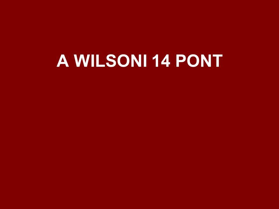 A WILSONI 14 PONT