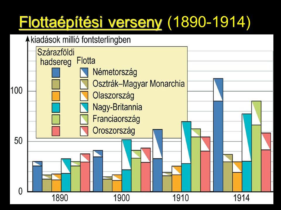 Flottaépítési verseny (1890-1914))*