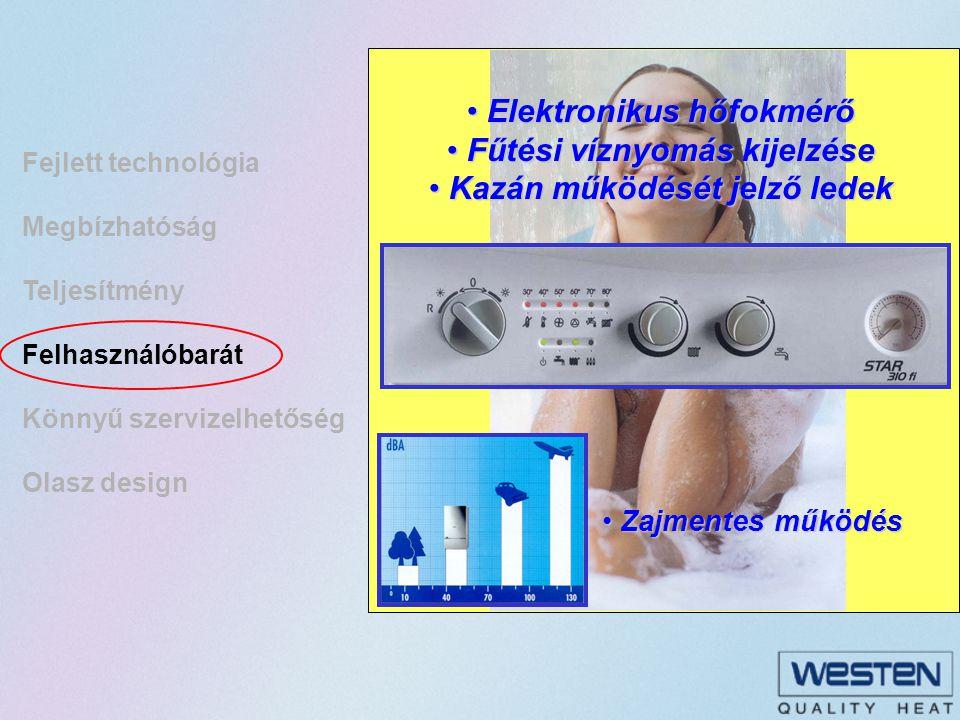Elektronikus hőfokmérő Fűtési víznyomás kijelzése