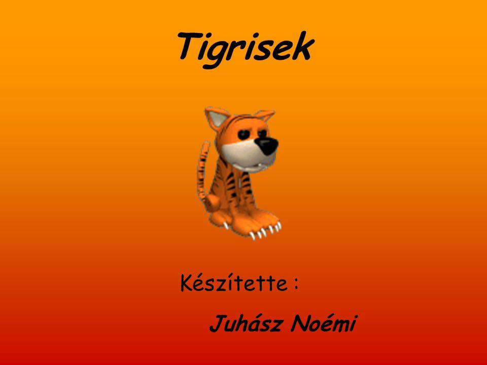 Tigrisek Készítette : Juhász Noémi