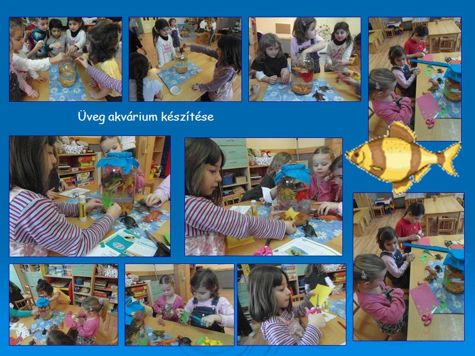 Üveg akvárium készítése