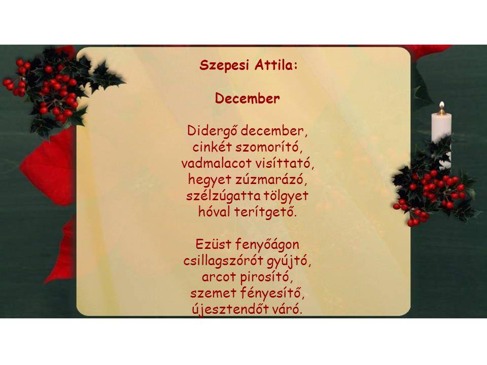 Szepesi Attila: December. Didergő december, cinkét szomorító, vadmalacot visíttató, hegyet zúzmarázó,